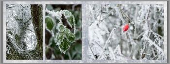 fotobuch-winter_11